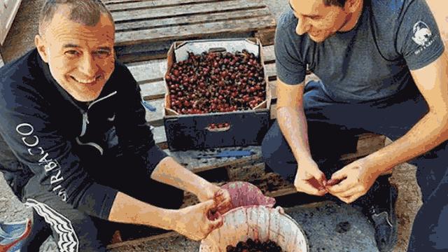 La preparazione della frutta da usare in una birra sour del birrificio artigianale Opperbacco di Teramo | Topbeer