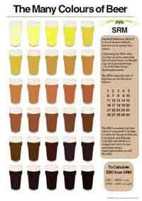 Tabella SRM dei colori della birra